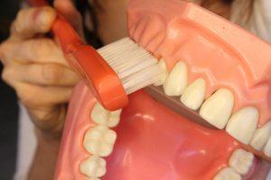 angulate toothbrush